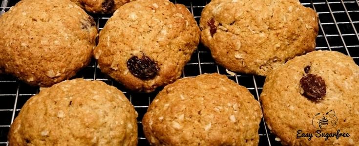 oatmeal raisin cookie recipes