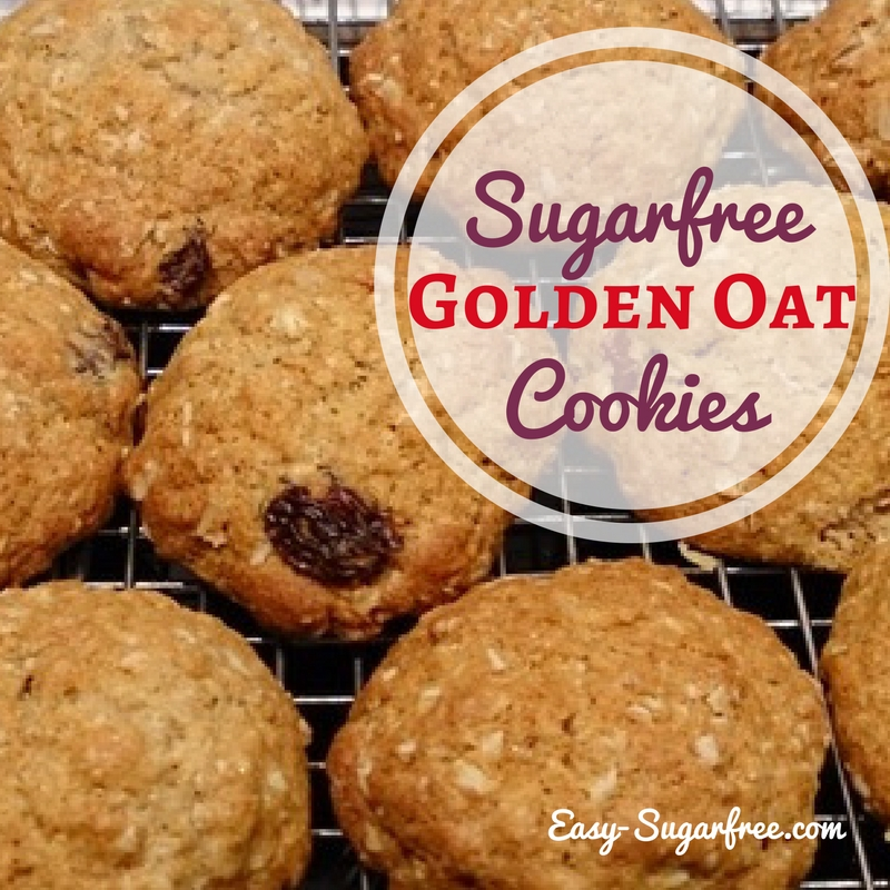 Sugar free Raisin Oat Cookies